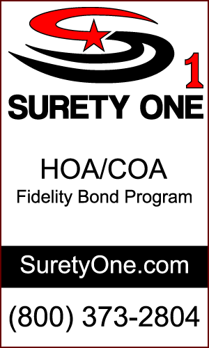 new 300x500_surety-one-ad-border