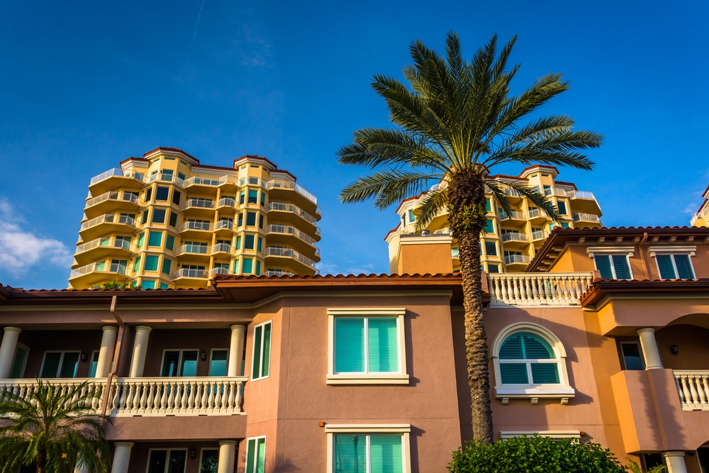 Palm trees, houses and condo towers in Saint Petersburg, Florida.